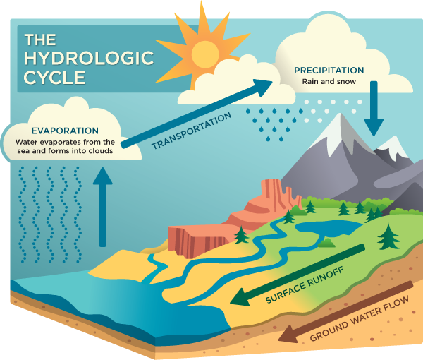 simone-bennett-water-cycle